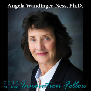 Innovation Fellow Wandinger-Ness